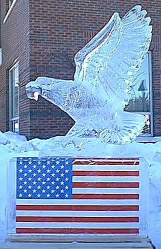 [Image - two block Eagle landing on an American Flag ]